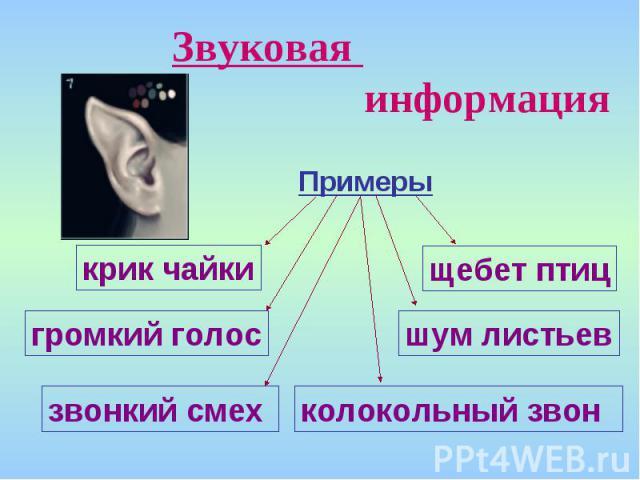 Звуковая информация Примеры
