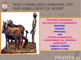 ЧЕМ ЗАНИМАЛИСЬ РИМЛЯНЕ, ЧТО ВЫРАЩИВАЛИ И ГДЕ ЖИЛИ?Римляне занимались земледелием