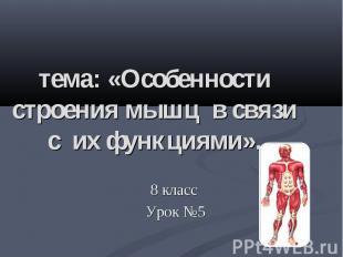 тема: «Особенности строения мышц в связи с их функциями». 8 класс Урок №5