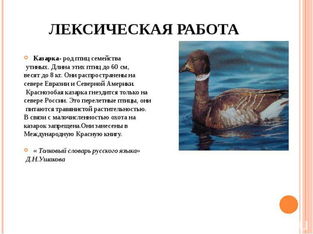 ЛЕКСИЧЕСКАЯ РАБОТА Казарка- род птиц семейства утиных. Длина этих птиц до 60 см, весят до 8 кг. Они распространены на севере Евразии и Северной Америки. Краснозобая казарка гнездится только на севере России. Это перелетные птицы, они питаются травян…
