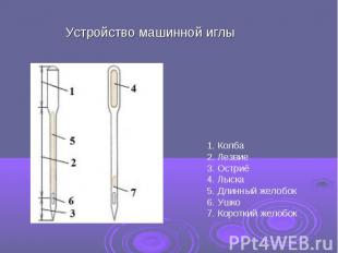 Устройство машинной иглы 1. Колба2. Лезвие3. Остриё4. Лыска5. Длинный желобок6.