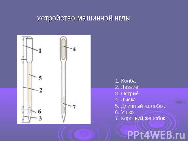 Устройство машинной иглы 1. Колба2. Лезвие3. Остриё4. Лыска5. Длинный желобок6. Ушко7. Короткий желобок
