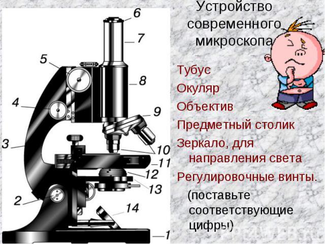 Устройство современного микроскопаТубусОкулярОбъективПредметный столикЗеркало, для направления светаРегулировочные винты. (поставьте соответствующие цифры)