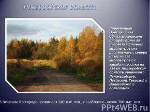 Новгородская областьСовременная Новгородская область занимает площадь более 55 т