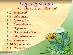 Перевертыши 1 Марья-кофе – Иван-чай2 Зверолюб-3 Забывалка-4 Мухолюб –5 Огородник