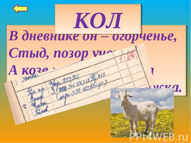 КОЛВ дневнике он – огорченье,Стыд, позор ученика,А козе на приключеньяНе дает сбежать с лужка.