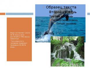 Вода составляет около 90 % массы всех растений и 75% массы животных. Тело взросл