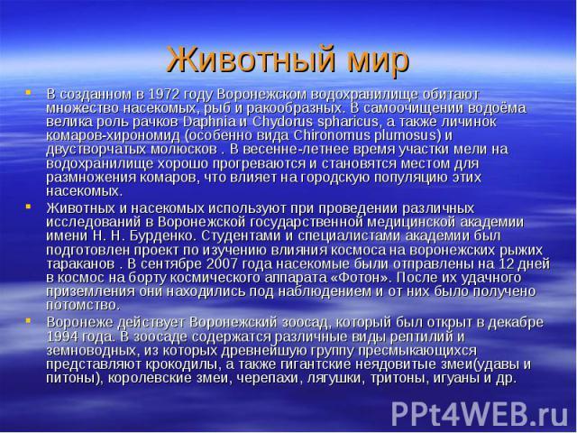 Животный мирВ созданном в 1972 году Воронежском водохранилище обитают множество насекомых, рыб и ракообразных. В самоочищении водоёма велика роль рачков Daphnia и Chydorus spharicus, а также личинок комаров-хирономид (особенно вида Chironomus plumos…