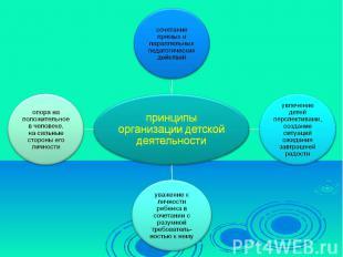 принципы организации детской деятельности