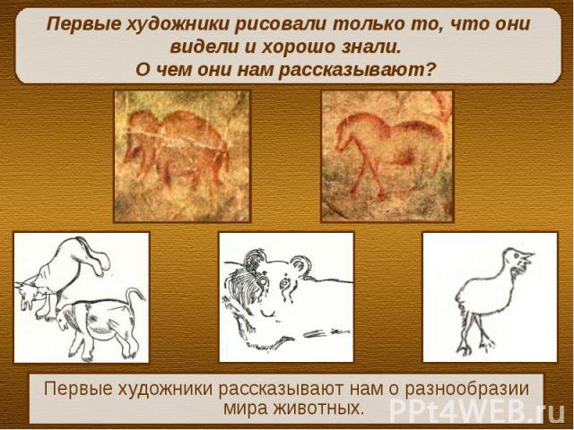 Первые художники рисовали только то, что они видели и хорошо знали. О чем они нам рассказывают? Первые художники рассказывают нам о разнообразии мира животных.