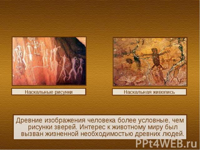 Древние изображения человека более условные, чем рисунки зверей. Интерес к животному миру был вызван жизненной необходимостью древних людей.