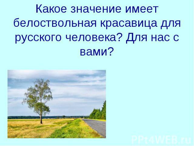 Какое значение имеет белоствольная красавица для русского человека? Для нас с вами?ппр