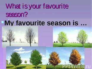 What is your favourite season?My favourite season is …