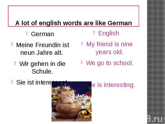 A lot of english words are like GermanGermanMeine Freundin ist neun Jahre alt. Wir gehen in die Schule.Sie ist interessant.English My friend is nine years old.We go to school.She is interesting.