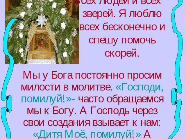 Милует моё сердечкоВсех людей и всех зверей. Я люблю всех бесконечно и спешу помочь скорей.Мы у Бога постоянно просим милости в молитве. «Господи, помилуй!»- часто обращаемся мы к Богу. А Господь через свои создания взывает к нам: «Дитя Моё, помилуй…