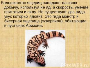 Большинство ящериц нападают на свою добычу, используя не яд, а скорость, умение