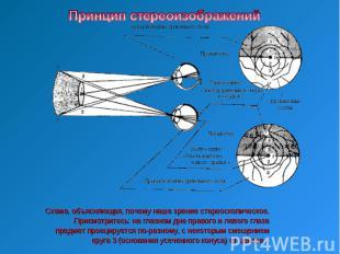 Принцип стереоизображенийСхема, объясняющая, почему наше зрение стереоскопическо