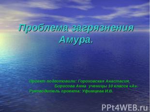 Проблема загрязнения Амура Проект подготовили: Гороховская Анастасия, Борисова А