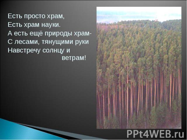Есть просто храм,Есть храм науки. А есть ещё природы храм-С лесами, тянущими рукиНавстречу солнцу и ветрам!