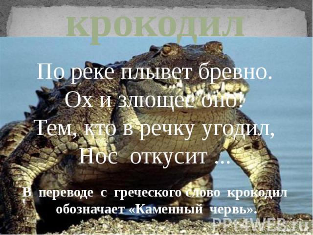 крокодилПо реке плывет бревно.Ох и злющее оно!Тем, кто в речку угодил,Нос откусит ...В переводе с греческого слово крокодил обозначает «Каменный червь».