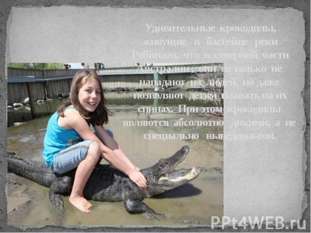 Удивительные крокодилы, живущие в бассейне реки Робинзон, что в северной части Австралии , они не только не нападают на людей, но даже позволяют детям плавать наих спинах. При этом крокодилы являются абсолютно дикими, а не специально выве…