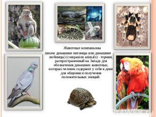 Животные-компаньоны (иначе домашние питомцы или домашние любимцы) (companion ani