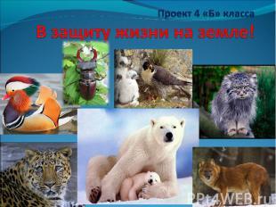 Проект 4 «Б» класса В защиту жизни на земле!