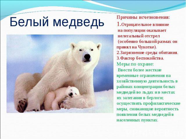 Белый медведьПричины исчезновения:1.Отрицательное влияние на популяции оказывает нелегальный отстрел (особенно большой размах он принял на Чукотке). 2.Загрязнение среды обитания. 3.Фактор беспокойства. Меры по охране: Ввести более жесткие временные …