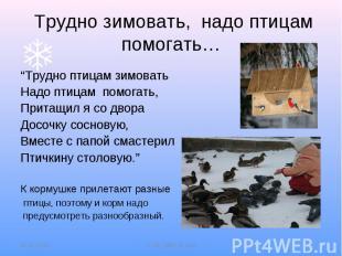 """Трудно зимовать, надо птицам помогать…""""Трудно птицам зимоватьНадо птицам помогат"""