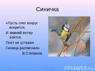 Синичка«Пусть снег вокруг искрится,И зимний ветер злится.Поет не уставаяСиница р