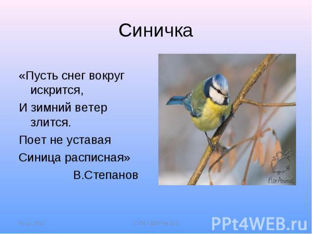 Синичка«Пусть снег вокруг искрится,И зимний ветер злится.Поет не уставаяСиница расписная» В.Степанов