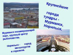 Крупнейшие городатундры - Мурманск, Норильск. Мурманск незамерзающий порт, крупн