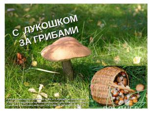 С лукошком за грибами Презентация подготовлена по теме « С лукошком за грибами»