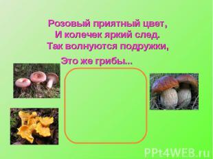 Розовый приятный цвет,И колечек яркий след.Так волнуются подружки,Это же грибы..