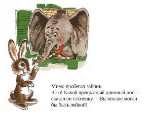 Мимо пробегал зайчик. О-о! Какой прекрасный длинный нос! – сказал он слоненку. –