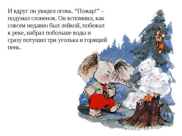 """И вдруг он увидел огонь. """"Пожар!"""" – подумал слоненок. Он вспомнил, каксовсем недавно был лейкой, побежалк реке, набрал побольше воды и сразу потушил три уголька и горящийпень."""