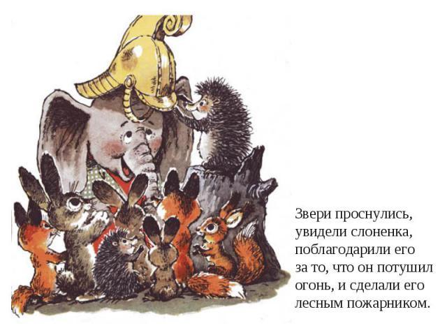 Звери проснулись,увидели слоненка,поблагодарили егоза то, что он потушилогонь, и сделали еголесным пожарником.