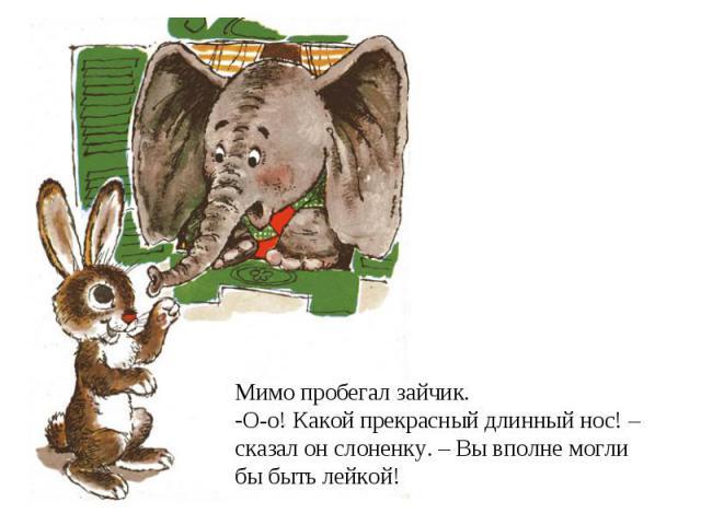 Мимо пробегал зайчик. О-о! Какой прекрасный длинный нос! – сказал он слоненку. – Вы вполне могли бы быть лейкой!