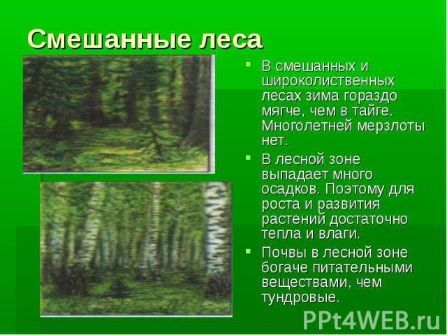 Смешанные лесаВ смешанных и широколиственных лесах зима гораздо мягче, чем в тайге. Многолетней мерзлоты нет. В лесной зоне выпадает много осадков. Поэтому для роста и развития растений достаточно тепла и влаги.Почвы в лесной зоне богаче питательным…