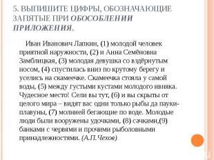 5. Выпишите цифры, обозначающие запятые при обособлении приложения. Иван Иванови