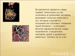 Встречаются паразиты среди червей. Некоторые из них, поселяясь в организме челов