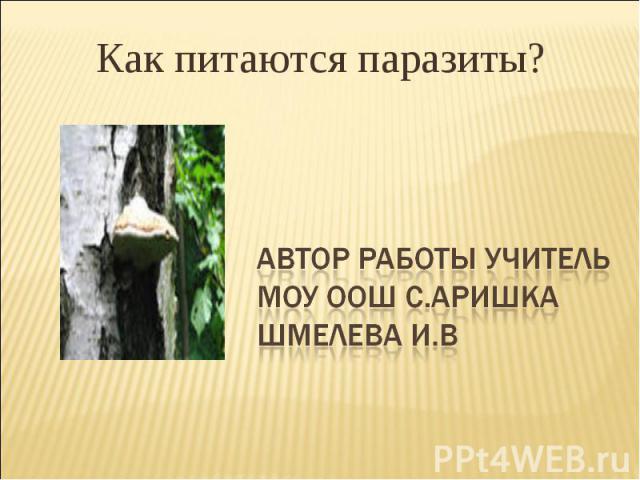 Как питаются паразиты? АВТОР работы учитель Моу оош с.аришка шмелева и.в