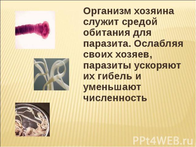 Организм хозяина служит средой обитания для паразита. Ослабляя своих хозяев, паразиты ускоряют их гибель и уменьшают численность