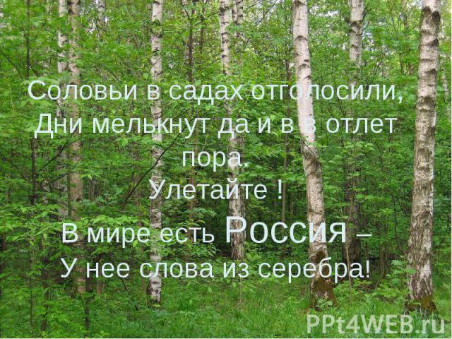 Соловьи в садах отголосили,Дни мелькнут да и в в отлет пора.Улетайте !В мире есть Россия –У нее слова из серебра!