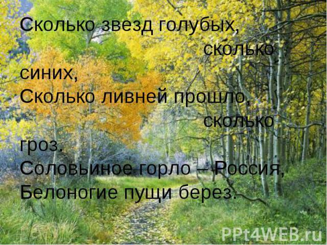 Сколько звезд голубых, сколько синих,Сколько ливней прошло, сколько гроз.Соловьиное горло – Россия,Белоногие пущи берез.