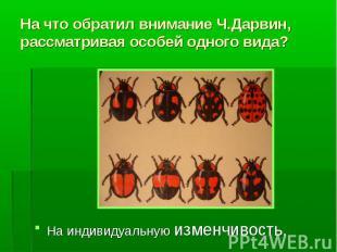 На что обратил внимание Ч.Дарвин, рассматривая особей одного вида? На индивидуал