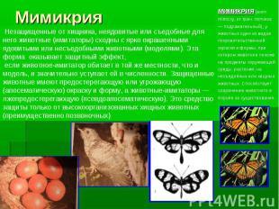 Мимикрия Незащищенные от хищника, неядовитые или съедобные для него животные (им