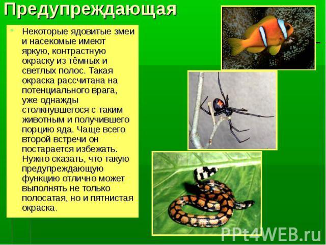 ПредупреждающаяНекоторые ядовитые змеи и насекомые имеют яркую, контрастную окраску из тёмных и светлых полос. Такая окраска рассчитана на потенциального врага, уже однажды столкнувшегося с таким животным и получившего порцию яда. Чаще всего второй …