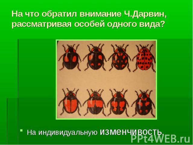 На что обратил внимание Ч.Дарвин, рассматривая особей одного вида? На индивидуальную изменчивость.