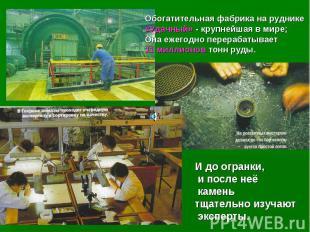 Обогатительная фабрика на руднике «Удачный» - крупнейшая в мире; Она ежегодно пе